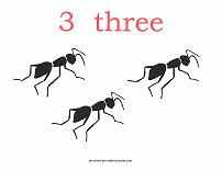 3 bugs counting card