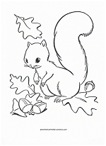 squirrel in fall coloring page