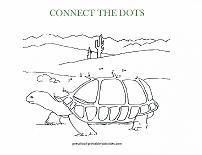 turtle dot to dot