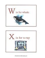 W and X flashchards