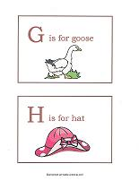 G and H flashcards