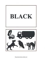 black color flash cards
