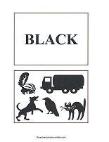 black color flash cards