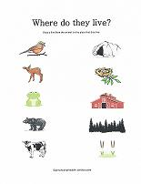 match animals to their homes worksheet