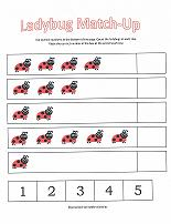 lady bug worksheet