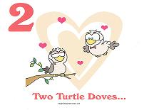 2 turtle doves wall card