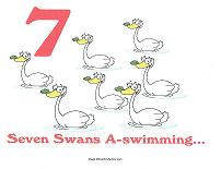 7 swans a swimming wall card