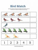 bird counting page