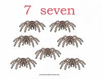 7 bugs counting card