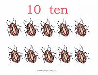 10 bugs counting card